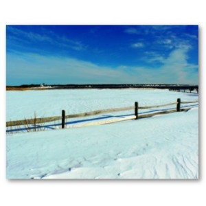 Jersey Shore Vacations: Cal Schwartz - Snowy Beach