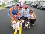 Jersey Shore Events: 4th of July Fireworks and Parades