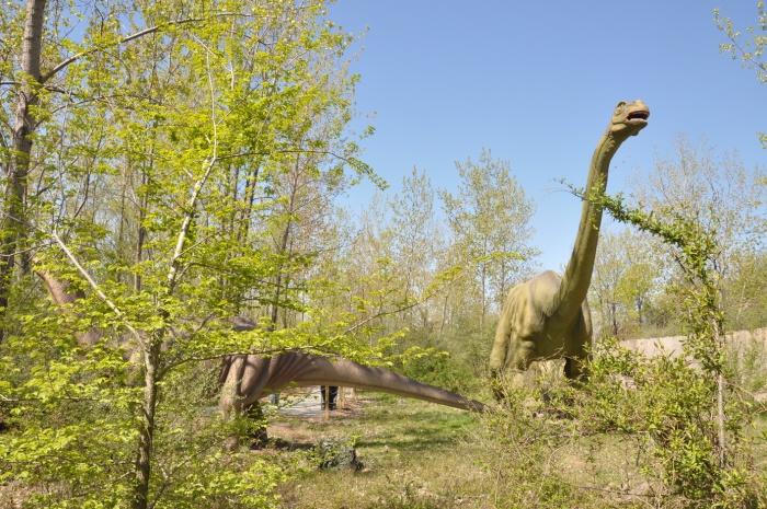 Field Station Dinosaurs Secaucus
