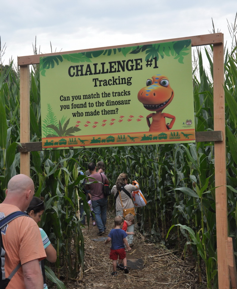 Dinosaur Train NJ Corn Maze