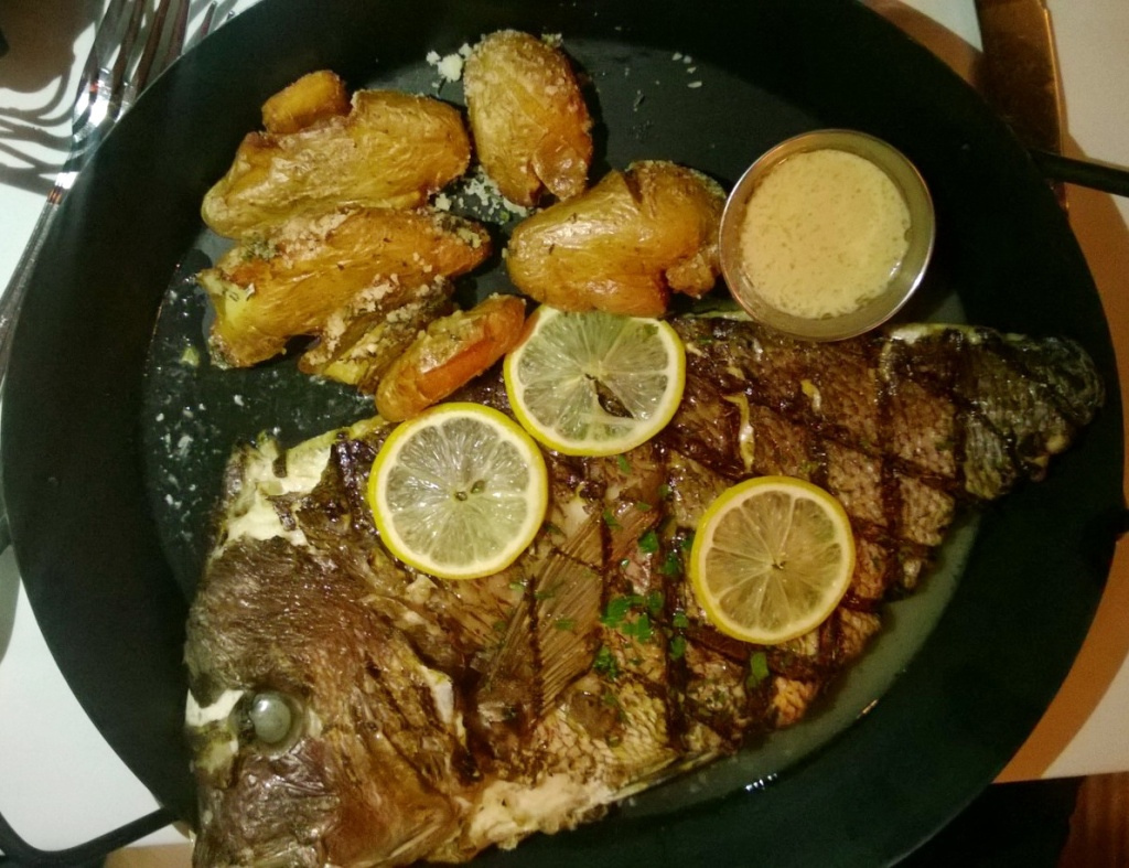 Catch Review Red Bank Red Snapper Fish