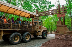Safari Off Road Adventure at Six Flags