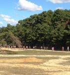 Six Flags NJ Safari Run