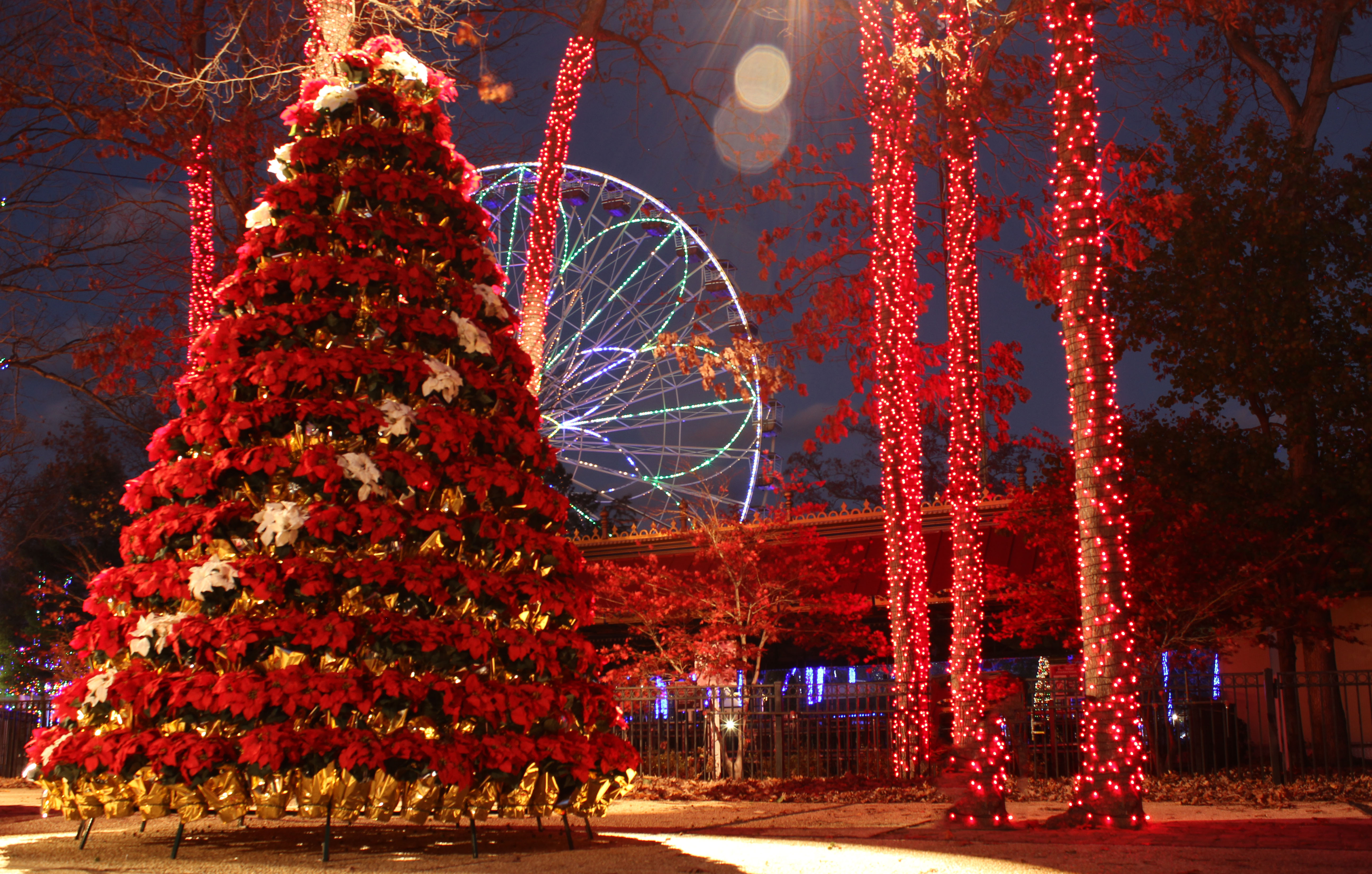 New Holiday in the Park Festival Dazzles at Six Flags Great ...