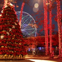 New Holiday in the Park Festival Dazzles at Six Flags Great Adventure