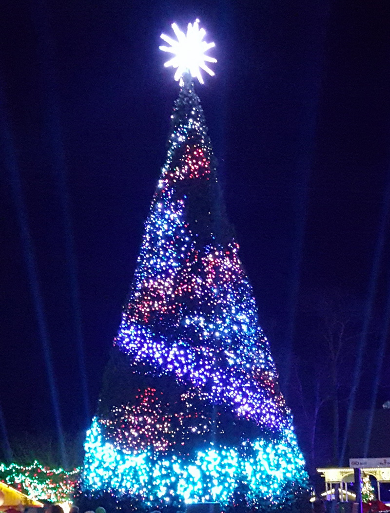 10 Reasons to Visit Six Flags Great Adventure's Holiday in the ...