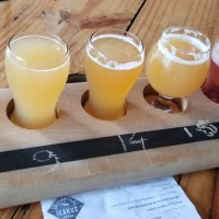 Jersey Shore Breweries: Icarus Brewing Review