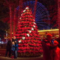 Six Flags' Holiday in the Park Will Dazzle with Even More Lights, Rides and Magic in 2019