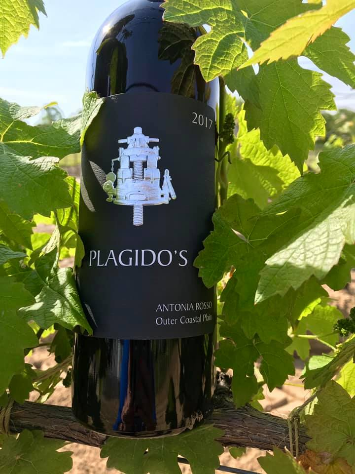 Plagido's Winery Review