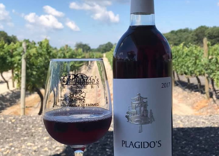 NJ Winery Reviews: Plagido's Winery Hammonton