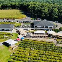 Pocono Libations: Blue Ridge Winery Review