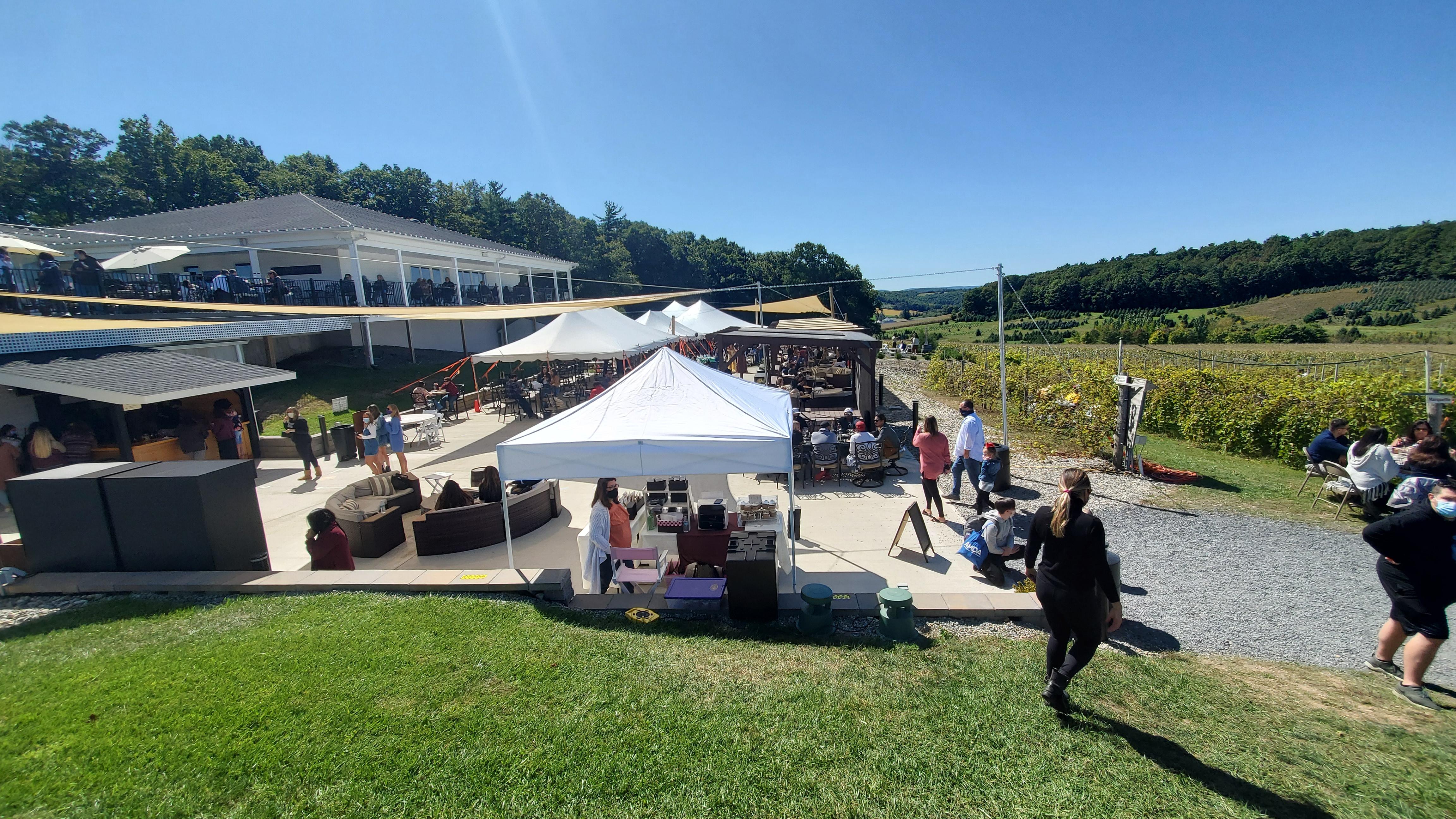 Blue Ridge Vineyards Poconos PA review